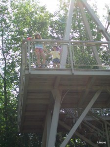 Oh, they climbed the look out tower too and saw a lot of birds.