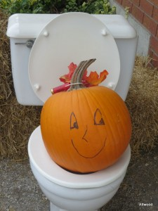 """He, he mommy.  A pumpkin on the potty."""