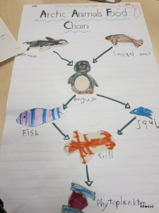 After care is talking about the Artic.  Can you guess who made the penguin?