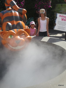 Cheshire Cat smoking fountain.