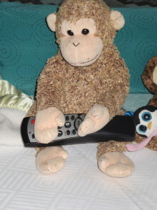 Apparently it was Monkey's turn to have the remote
