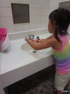 Why do more places not offer a lower sink for children?