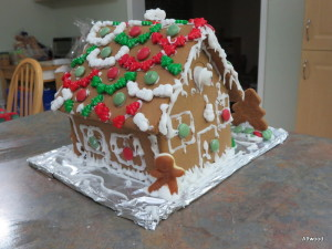 Back view (I really worry that the roof is not structurally sound.  Perhaps the builders should have installed some sort of supports.)